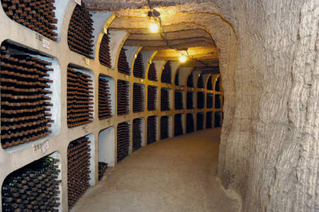 практика инвестирования в вино