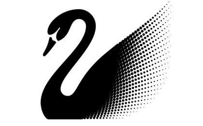Черный лебедь Талеба