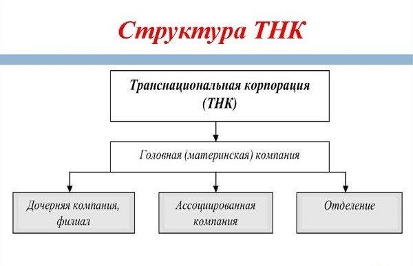 структура ТНК
