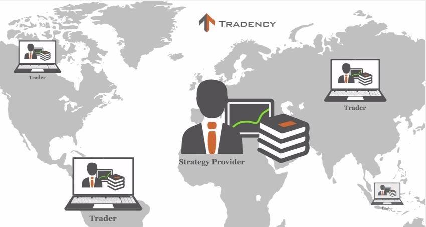 Tradency автокопирование