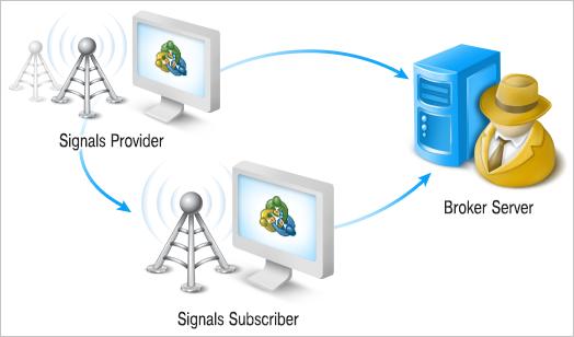 схема поставки сигналов Metaquotes