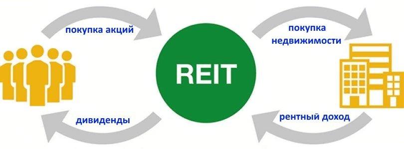 как устроен REITs