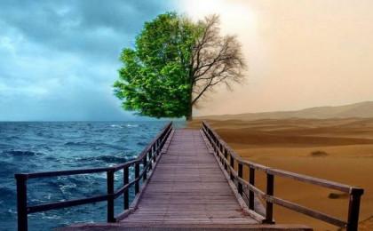 Два пути