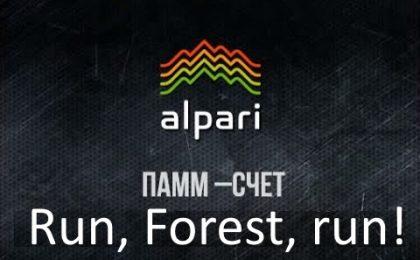 Инвестиции в ПАММ счета Альпари. Год спустя