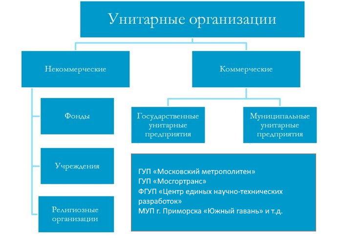 структура унитарных предприятий